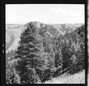 item thumbnail for Moscow (Idaho)[?], 1959 [12]