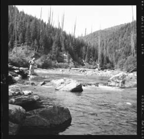 item thumbnail for Weitas Creek (Idaho), 1959 [2]