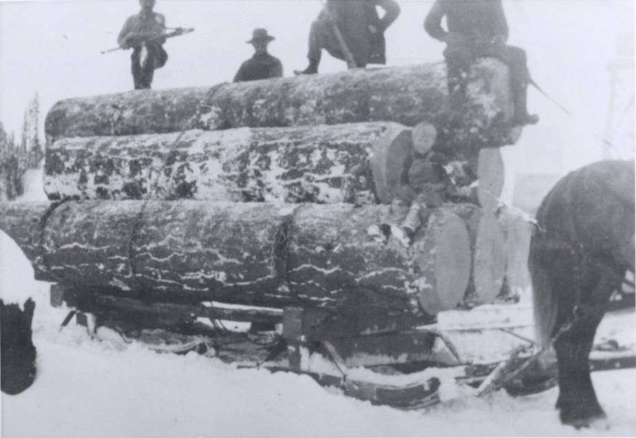 item thumbnail for Sleigh Loaded with Logs [04]