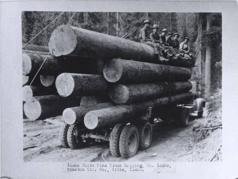 item thumbnail for Loaded Logging Truck [02]