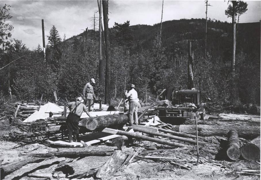 item thumbnail for Jackson Lumber Harvester