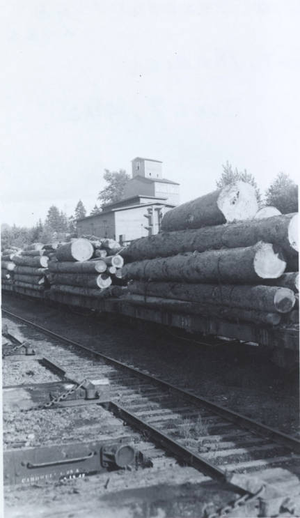 item thumbnail for Flatcars Loaded with Logs
