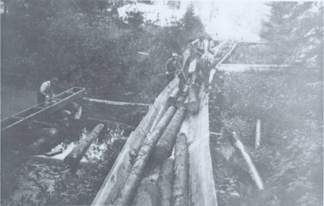 item thumbnail for Winton Lumber Company Flume [01]