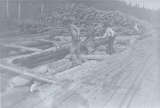 item thumbnail for Falls Creek Chute Landing and Log Deck