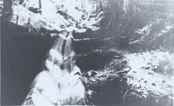 item thumbnail for Falls Creek Chute