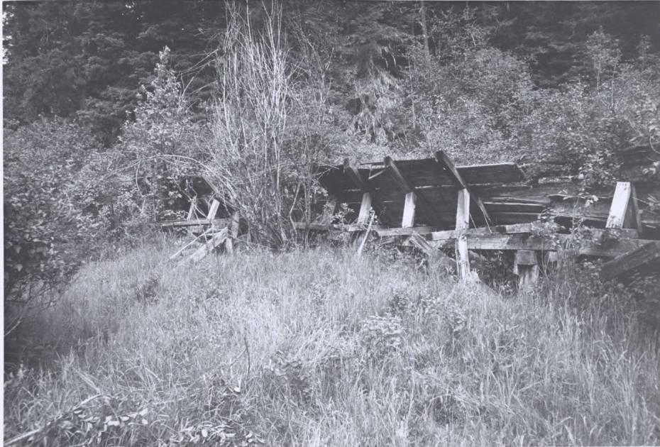 item thumbnail for Benewah Creek Flume
