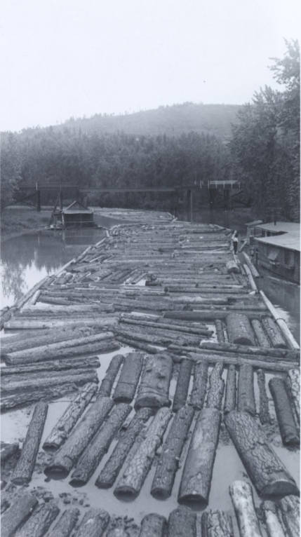 item thumbnail for Logs Towed Down St. Maries River