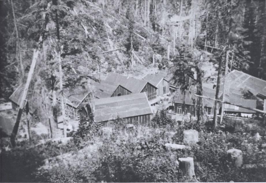 item thumbnail for Logging Camp