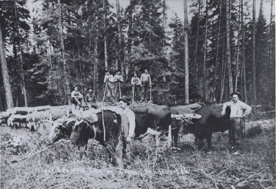 item thumbnail for Oxen and Logging Crew