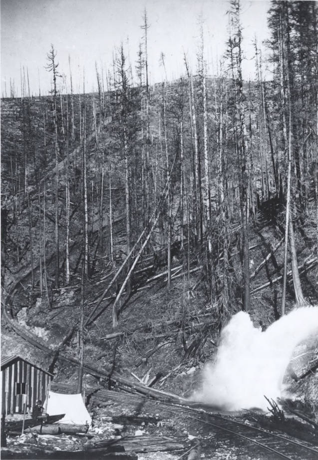 item thumbnail for Logs Exiting the Log Chute [01]