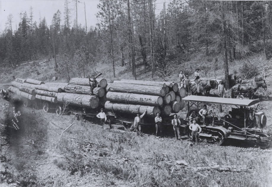 item thumbnail for Holt Tractor Loaded with Logs