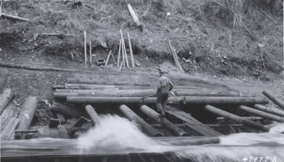 item thumbnail for Leiberg Creek Flume