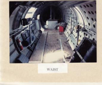 B17 Waist