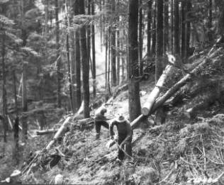 &#34;Building fire trench on Elmira fire. July-Aug. 1932.&#34;<br&gt;271