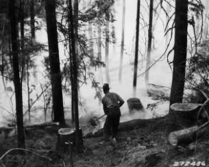&#34;Quenching the flames with dirt; Elmira fire.&#34;<br&gt;276